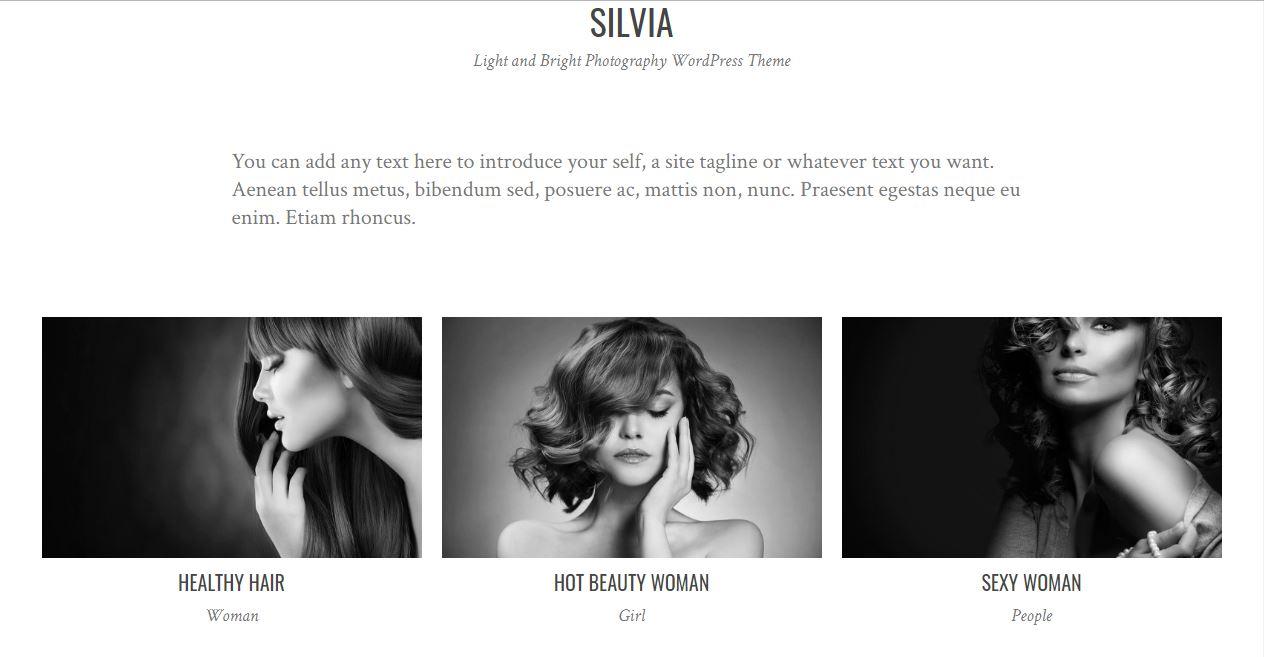 Silvia photography basic theme