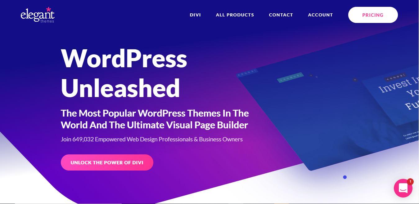 Divi free wordpress theme